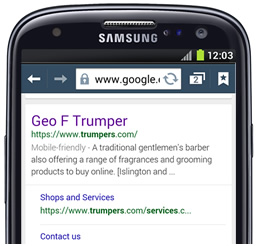Google mobile-friendly tag